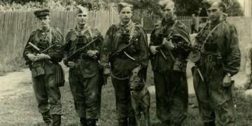 Борьба СМЕРШ с бандеровцами после войны (25 фото)