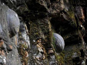 Каменные яйца