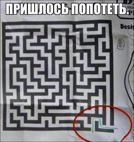 Прикольные картинки, мемы