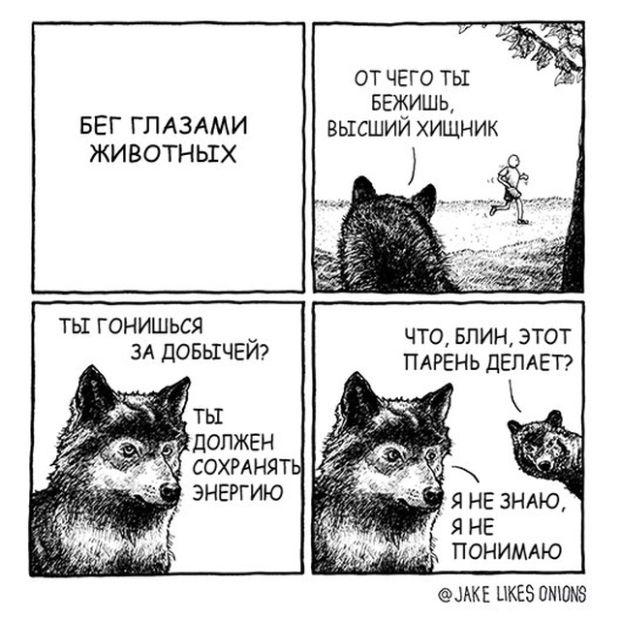 Смешные комиксы на русском про жизнь