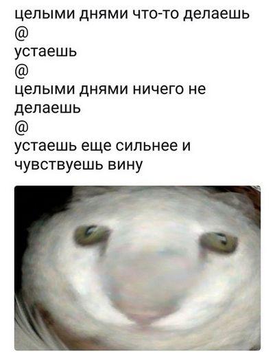Подборка классных мемов