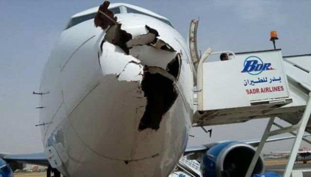 Boeing 737 после встречи со стаей птиц