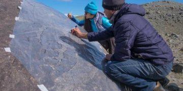 На Алтае обнаружен древний рисунок на камне II тысячелетия до н.э. (3 фото)