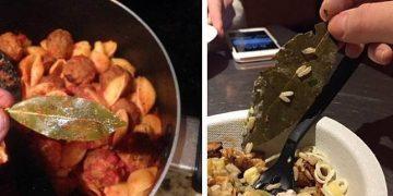 Пользователи Twitter жалуются на ресторан, обнаружив лист неизвестного происхождения (8фото)
