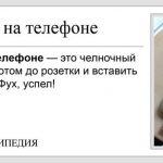 """""""Короче, Википедия"""" - короткие и смешные фразы (20фото)"""