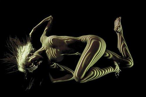 Фото ню: женское тело в свете и тени (11 фото)