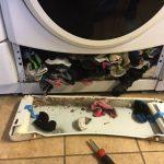 Тайна века раскрыта: вот куда пропадают носки в стиральной машине (4фото)