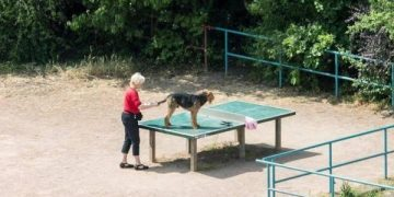 Многофункциональный стол для тенниса (4 фото)