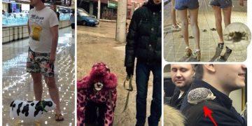 Из психбольниц тоже иногда отпускают на прогулки (16фото)