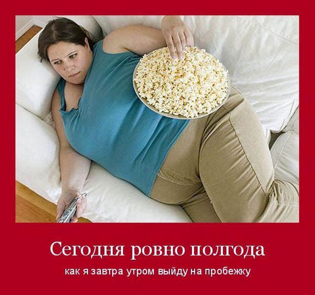 Демотиваторы про толстых и лишний вес (26 фото)