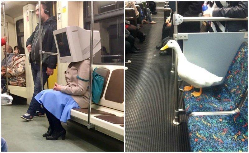 25 пассажиров метро, которые точно сделают поездку нескучной (26фото)