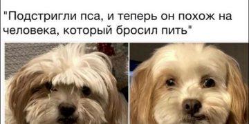 Смешные комменты из социальных сетей (24 картинки)
