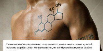 Интересные факты о мужском организме (10 фото)