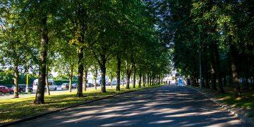 Парк «Озелененные территории МГУ»