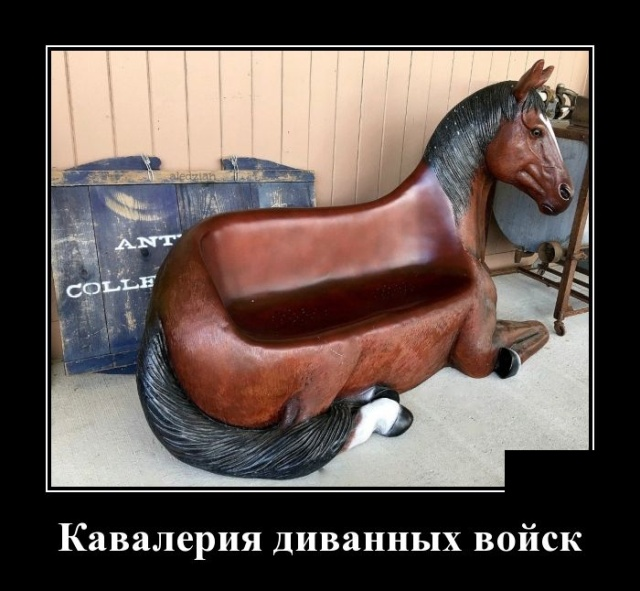 Новые смешные демотиваторы: кавалерия диванных войск