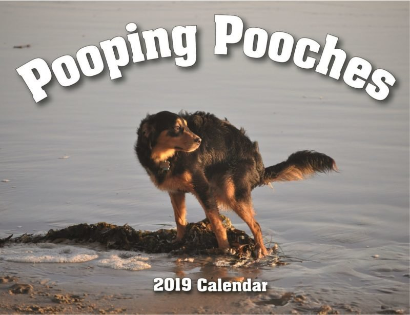 Полный абзац: календарь Pooping Dogs-2019 (Какающие собаки) на 2019 год (16фото)
