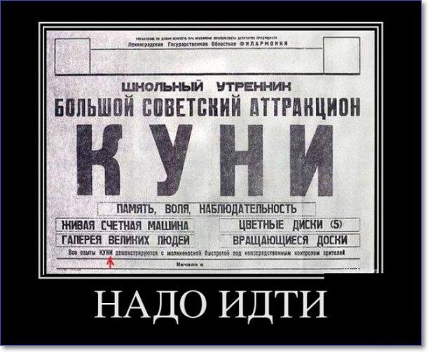 Лучшие ру демотиваторы ноября (150 демотиваторов)