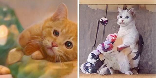 Нейросеть, генерирующая фото котов (20 фото)