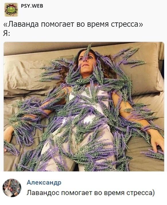 Новые скрины юмора и приколов из социальных сетей (50 фото)