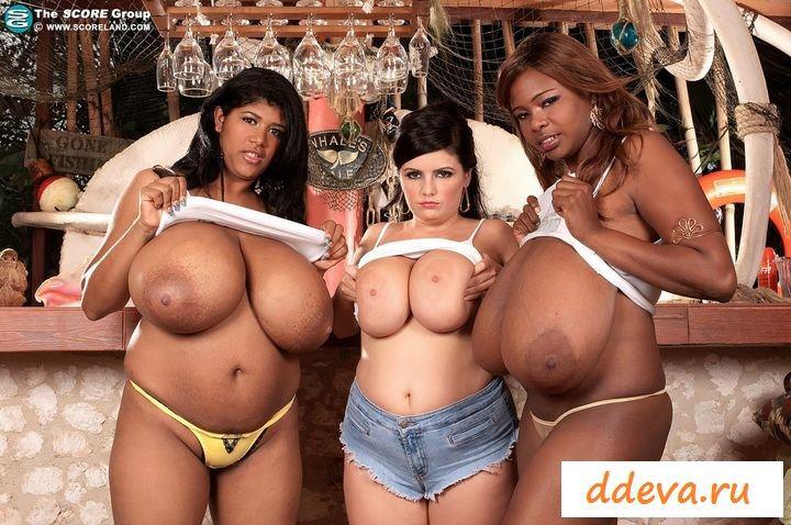 Две негритянки и мулатка показывают свои груди без лифчиков