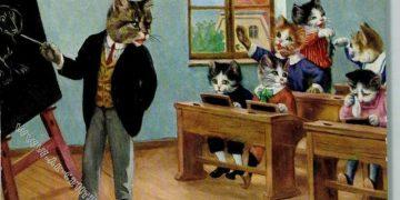 Немецкие ученые котики (17фото)